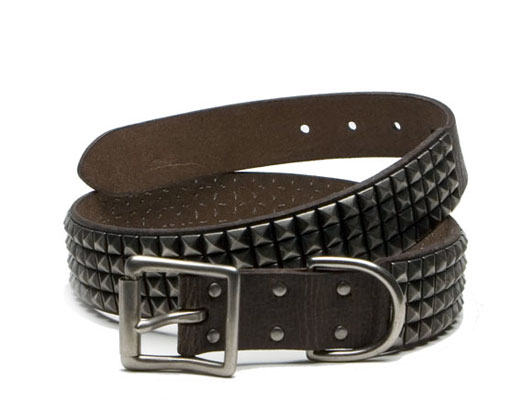Studded Belt in Chocolate